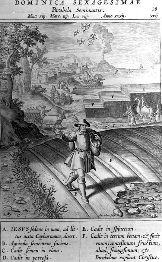 afbeelding missale romanum 038 gelijkenis de zaaier